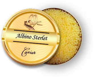 albino sterlet caviar