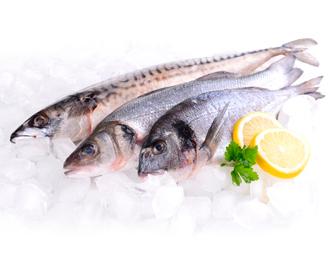 охолоджена риба